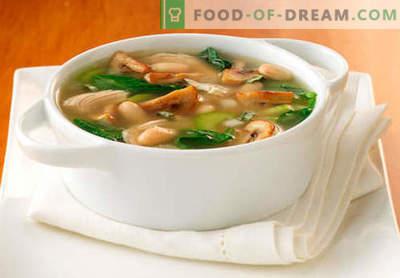 Seenesupp - parimad retseptid. Kuidas korralikult ja maitsev kokk supp seene puljongis.