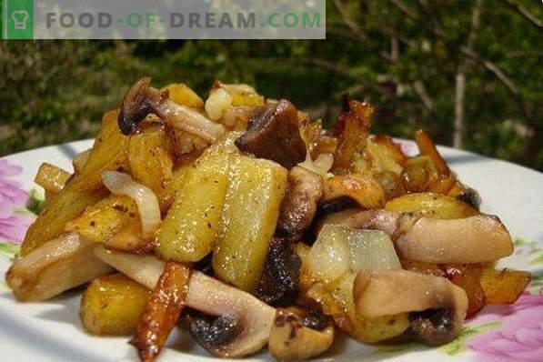 Kuidas kartulit praadida kuldse kooriku, sibula, liha, seente abil