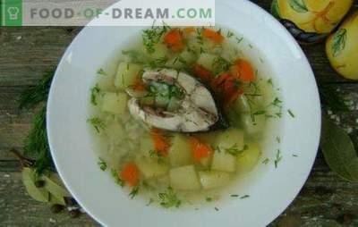 Karpių žuvų sriuba - kvapnus ir sveikas pirmasis kursas. Receptai karpių sriuba: klasikinis, su trynių, sorų, perlų miežių ir kt.