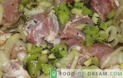 Kiwi kebabi marinaad - kiiresti ja universaalselt. Kiivi marinaadi retseptid sealiha, veiseliha, kana, kala jaoks