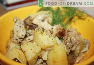 Kana hauti parima retseptiga. Kuidas korralikult ja maitsvalt küpsetada hautatud kartuleid kana.