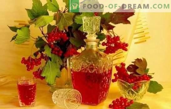 Viburnumi kodune tinktuur on maitsev ja tervislik. Kuidas teha tinktuuri viburnumist kodus alkoholis, konjakis, moonshine'is või viinas