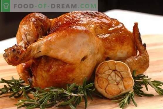 Kana küüslauguga - parimad retseptid. Kuidas õigesti ja maitsev kokk kana küüslauguga.
