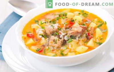 Kala supp riisiga on kerge ja maitsev esimene lõunasöögikursus. Parimad retseptid kala supp küpsetamiseks riisiga