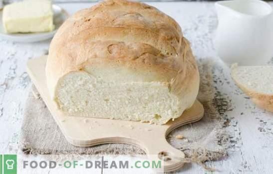 Valge leib ahjus - maitsvad omatehtud koogid. Parimad retseptid valge leiva valmistamiseks ahjus vees, piimas, jogurtis