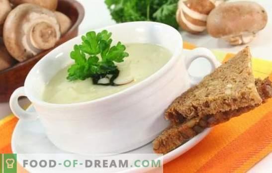 Seene supp sulatatud juustuga - soovimatult unustatud roog! Parimate seente suppide retseptid sulatatud juustuga