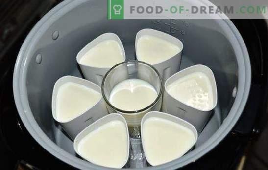 Jogurt krõbe-potis purkides on tervislik maitsev delikatess. Jogurtide sordid multikookerist purkides