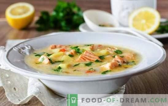 Koorjuustu juustu supp on lihtne gurmeeroog. Parimad retseptid juustu supid töödeldud juustust