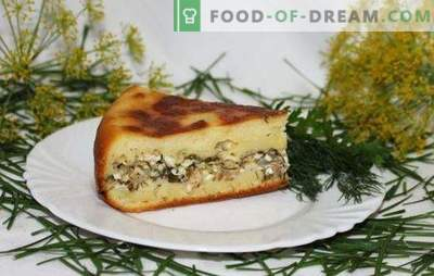 Fish cake in a slow cooker - ruddy handsome! Recipes fish pies in multicookers for every day