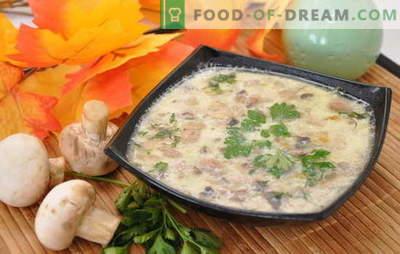 Äärmiselt lihtne ja unikaalselt maitsev seente supp kartulitega. Šampinjonist suppide valik kartulitega