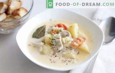 Chicken fillet soup - he and you will like me! Recipes for soup with chicken fillet: rice, cheese, mushroom, vegetable, with beans