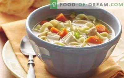 Lihtne igapäevane supid - 7 parimat retsepti. Kuidas valmistada lihtne supp iga päev: seene, kana, kala jne