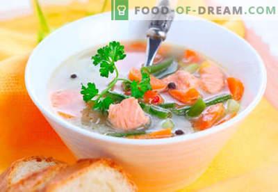 Örtsoppa - beprövade recept. Hur ordentligt och laga öringsoppa.