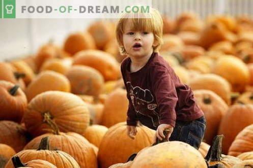Kõrvitsapüree lastele - parimad retseptid. Kuidas õigesti ja maitsev beebi kõrvitsapüree.