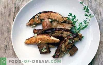 Kui palju süüakse süüa ja kuidas seda õigesti teha? Kuidas valmistada kuivatatud ja külmutatud seeni?
