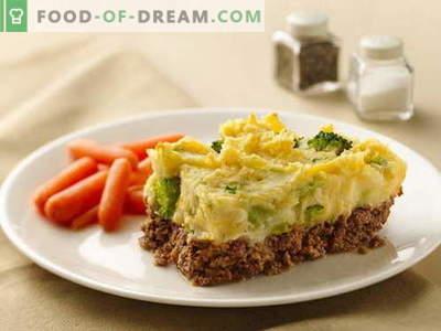Liha pajaroog - parimad retseptid. Kuidas õigesti ja maitsva kokk liha pajaroog.
