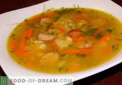 Stew sriubos - patvirtinti receptai. Kaip tinkamai ir skaniai virti troškinti sriuba.