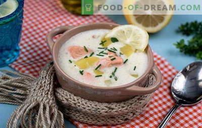 Maitsev Soome supp: retseptid. Soome supid värsketest, praetud, suitsutatud ja konserveeritud punastest kaladest