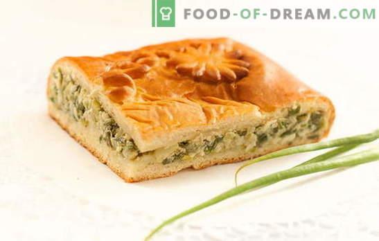 Rohelise sibula pirukas jogurtil - maitsvad omatehtud koogid. Retseptid pirukate ja rohelise sibulaga jogurtil ahjus ja multikookeris