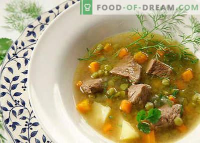 Lihaga supid - parimad retseptid. Kuidas õigesti ja maitsvaid küpsetisi supid lihaga.