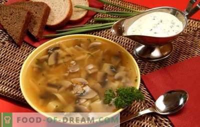Seen supp aeglases pliidis - neile, kes hindavad maitsvat toitu. Kiirete, rahuldavate ja maitsvate seente suppide valmistamine aeglases pliidis ilma probleemideta