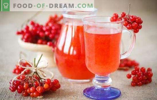 Vein, mis on pärit viburnumist kodus - eksootiline jook, mis on kõigile kättesaadav. Retseptid veinist viburnum kodus