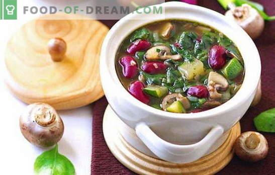 Paastunud supid - retseptid iga päev. Kuidas korralikult ja maitsvalt valmistada lahjaid suppe - retsepte iga päev ja puhkusel