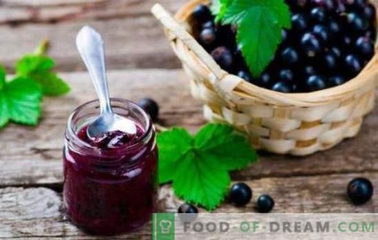 Mustsõstra marmelaad on tervise sahver. Kuidas valmistada maitsvat ja tervet mustsõstra marmelaad tsitrusviljade, karusmari, vaarika