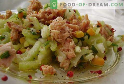 Konserveeritud tuunikala salat - tõestatud retseptid. Kuidas valmistada tuunikala konserveeritud salatit.