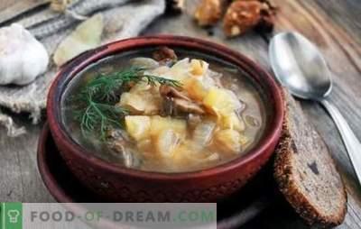 Hapukapsasupp seentega: traditsiooniline ja originaalne. Salatid kapsasupp seentega, tatar, oad, pärl-oder
