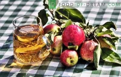 Omatehtud õunasiidri valmistamine - looduslik toode! Kuidas valmistada õunasiidri toorainet kodus