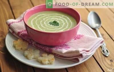 Tsukkiinipüree supp - ebatavaline, kuid maitsev! Küüslaugu suppide retseptid, tomat, juust, mesi, piparmünt, kana, köögiviljad ja seened