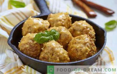 Lihapallid hapukoore kastmes - parimad retseptid. Kuidas süüa lihapallid kana, veiseliha, kala hakkimises hapukoorekastmes