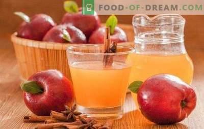 Õunamahla talveks kodus: ärge segage tehnoloogiat! Selle õunamahla klassikalised ja miksovye variandid talveks