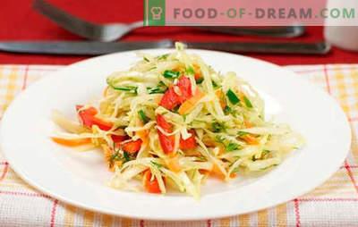 Kapsasalat paprikaga - parimad retseptid. Küpsetamine salat kapsas ja paprika.