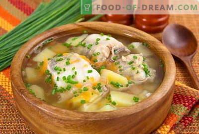 Kala supp - parimad retseptid. Kuidas õigesti ja maitsev küpsetada kala suppi.
