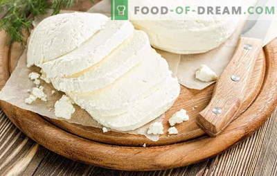 Adygei juust kodus: maitsev mis tahes nime all! Adygei juustu retseptid