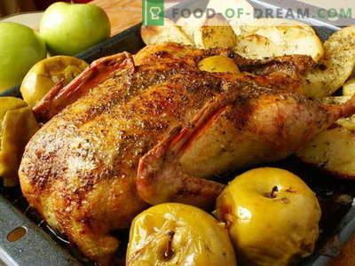Pardi õunad - parimad retseptid. Kuidas korralikult ja maitsev kokk õunaga valmistada.