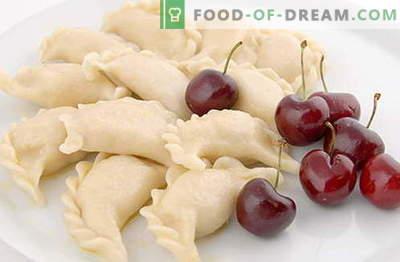Parimad retseptid on pelmeenid. Kuidas õigesti ja maitsvaid küpsiseid.