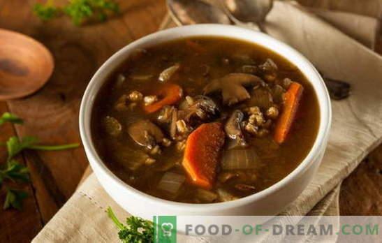 Lean supp seentega - lase alati olla maitsev! Erinevad retseptid väheste suppide jaoks seente ja teraviljaga, nuudlid, köögiviljad