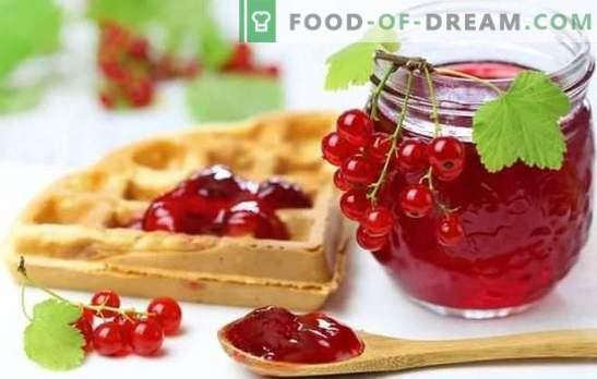 Punase sõstraga marmelaad on särav ja tervislik magustoit. Parimad retseptid punase sõstraga tarretisega juustu, koorega, piimaga, veiniga