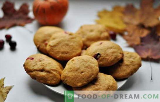 Lihtsad maitsvad küpsised kefiiril - kodus küpsetamise traditsioon. Kefiiri lihtsa küpsise retseptid: kaerahelbed, kaneeli, šokolaadi, pähklite, mooniseemnete jms.