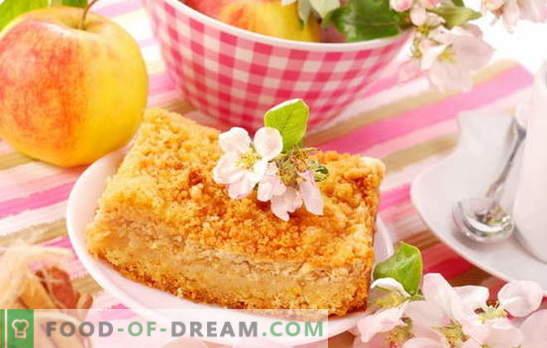 Kohupiima õunakook - üllatavalt lihtne! Retseptid hämmastavad kohupiimakoogid õunadega; õrn ja mahlane