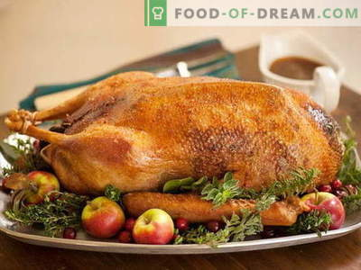 Baked goose in the oven - the best recipes. How to properly and tasty cook goose in the oven.