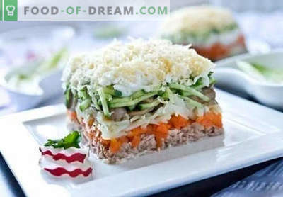 Ensalada de salmón rosado enlatado: una selección de las mejores recetas. Cómo cocinar correctamente y sabrosa ensalada de salmón rosado enlatado.
