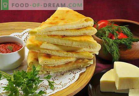 Juustupuu - parimad retseptid. Kuidas korralikult ja maitsev juustuga küpsetada.