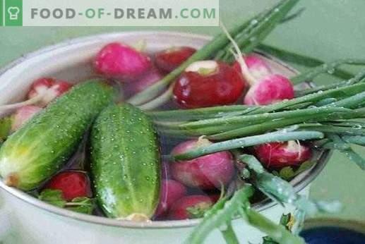 Nitraatide kogunemine taimedesse