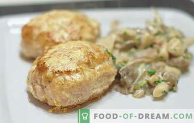 Tradiciniai ir neįprasti maltų kiaulienos kotletų receptai. Kaip virti mėsos padažus iš maltos kiaulienos visai šeimai