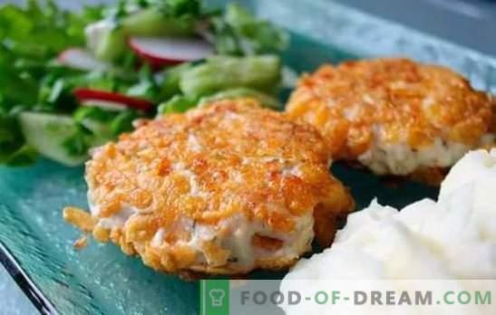 Kana tükid kogu selle mitmekesisuses! Retseptid mahlaste ja maitsvate kanabittide valmistamiseks juustu, seente, riisi ja koorekastmega