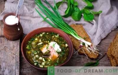 Vene okroshka on vana supp! Traditsioonilise vene okroshka retseptid kvassil, vadakul, puljongil, jogurtil